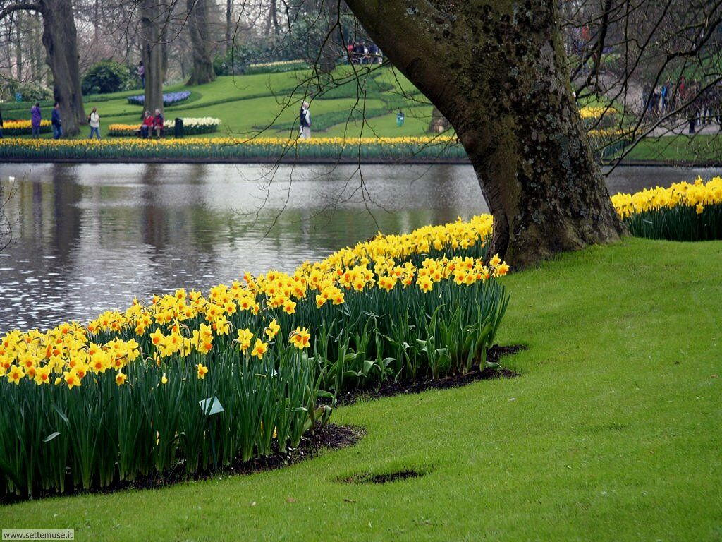 foto giardini per sfondi