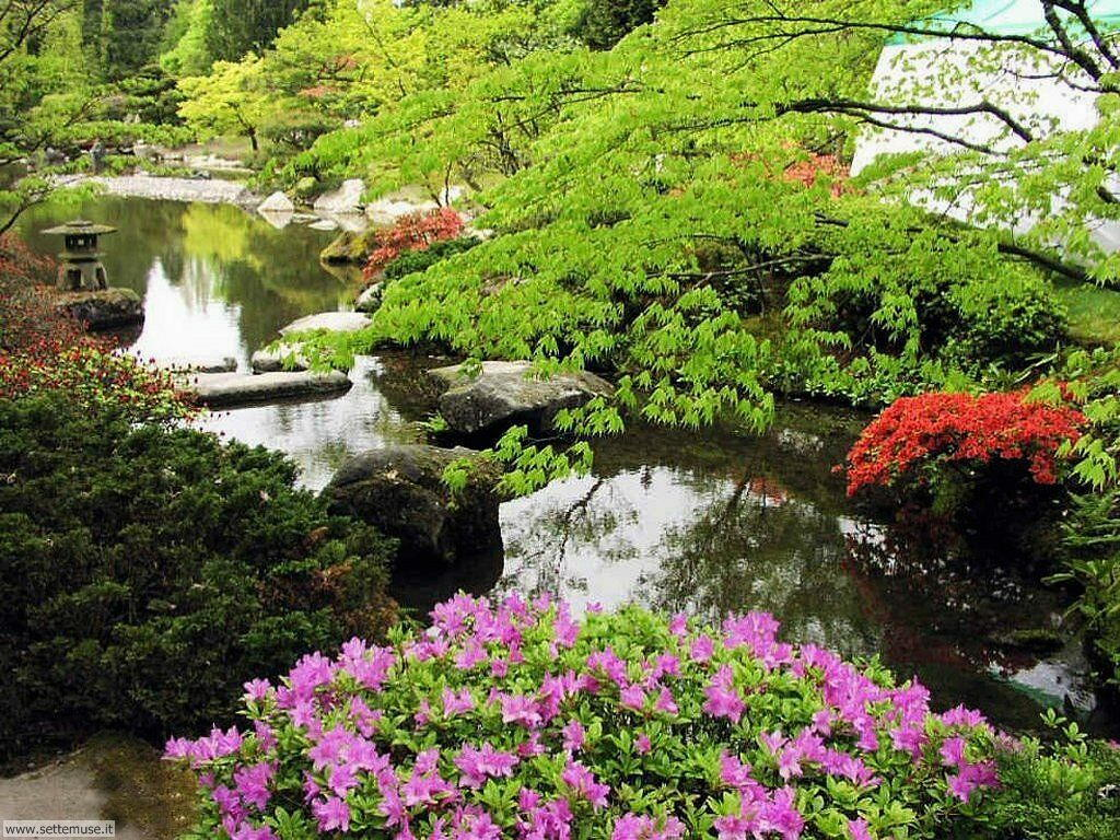 Slideshow foto giardini - Foto di giardini fioriti ...