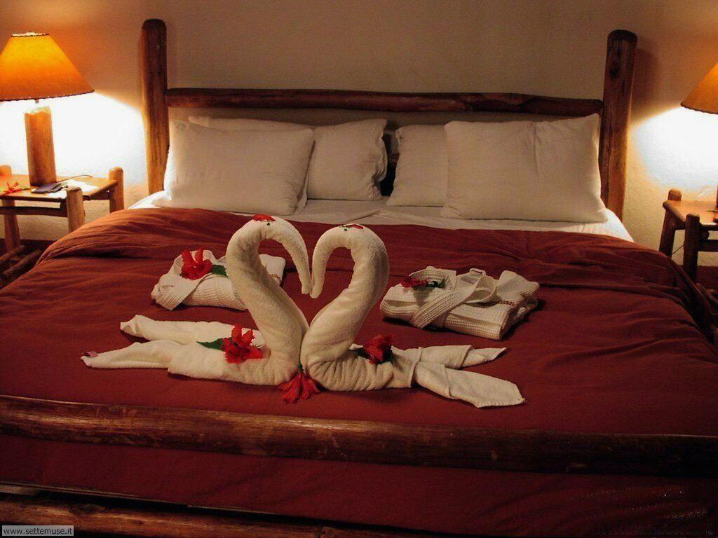 foto amore e innamorati per sfondi 013.jpg cigni
