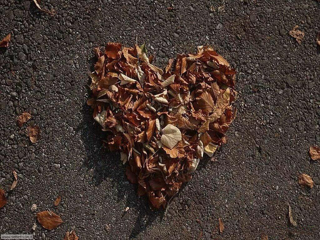 foto amore e innamorati per sfondi 026.jpg