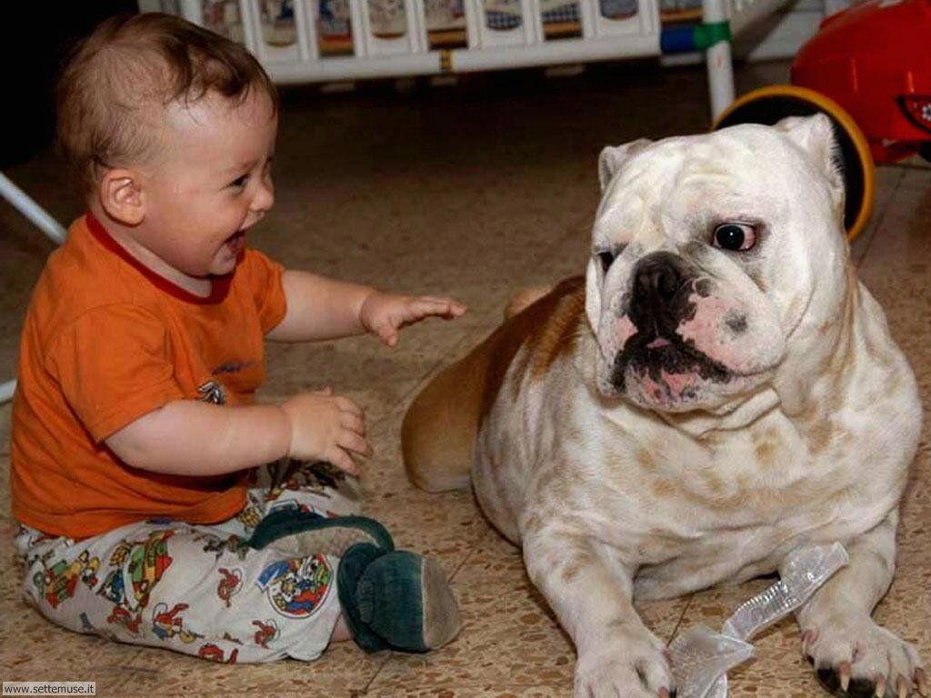 foto bambini e neonati per sfondi 040.jpg bambino che gioca col cane