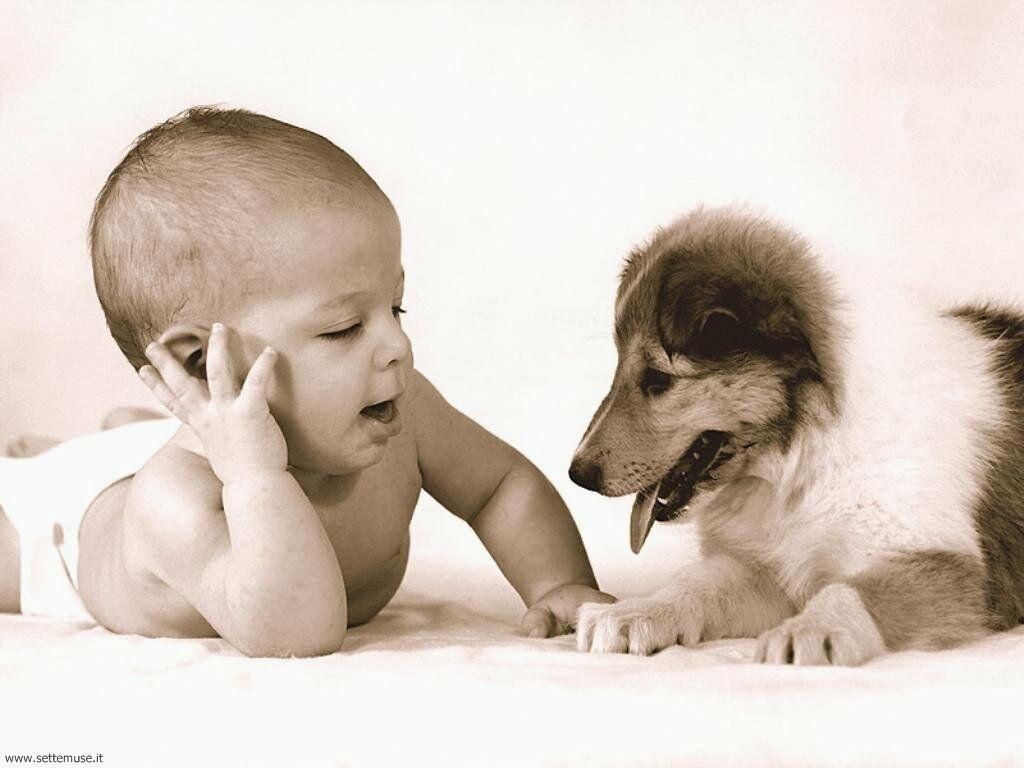 foto bambini e neonati per sfondi 046.jpg bimbo col cane
