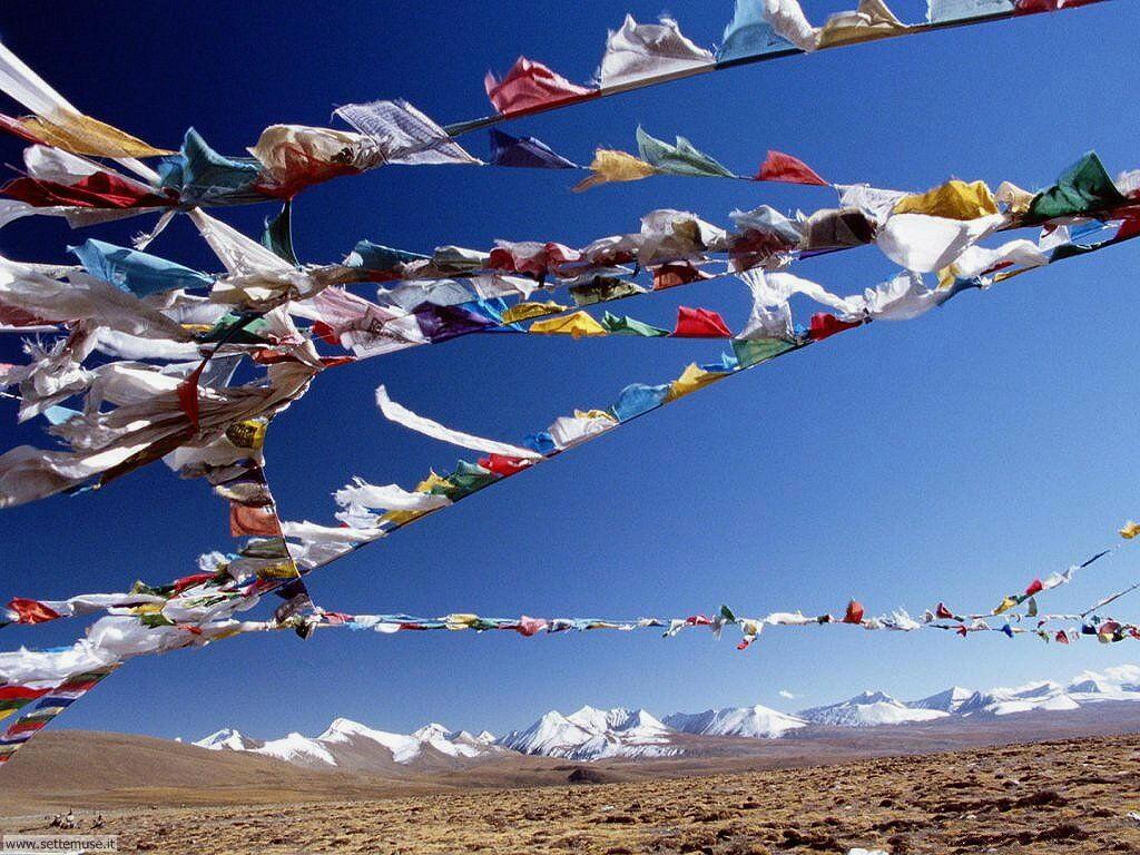 foto bandiere e stemmi per sfondi 004.jpg