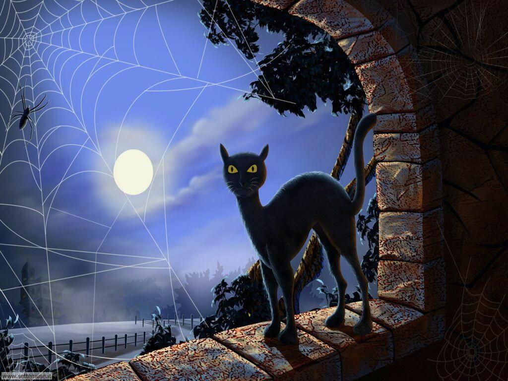 festa di halloween 23