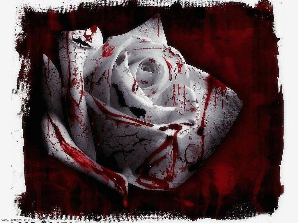 foto sfondi romanticismo foto romantica 41