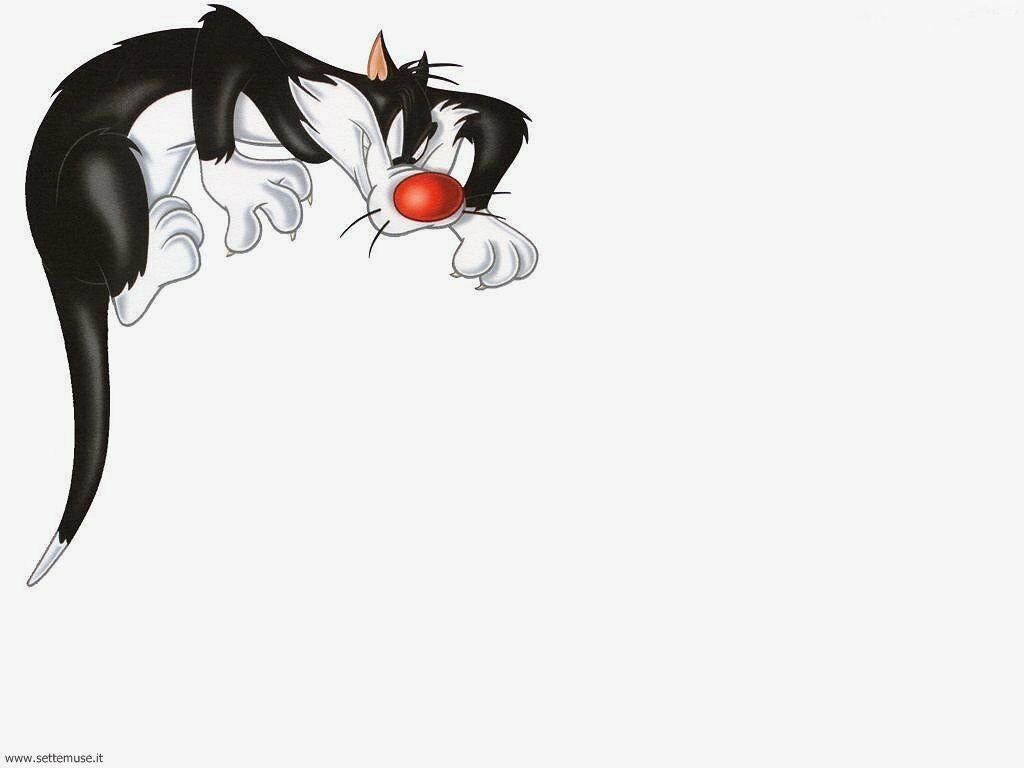 foto cartoni cartoons per sfondi 015.jpg gatto silvestro