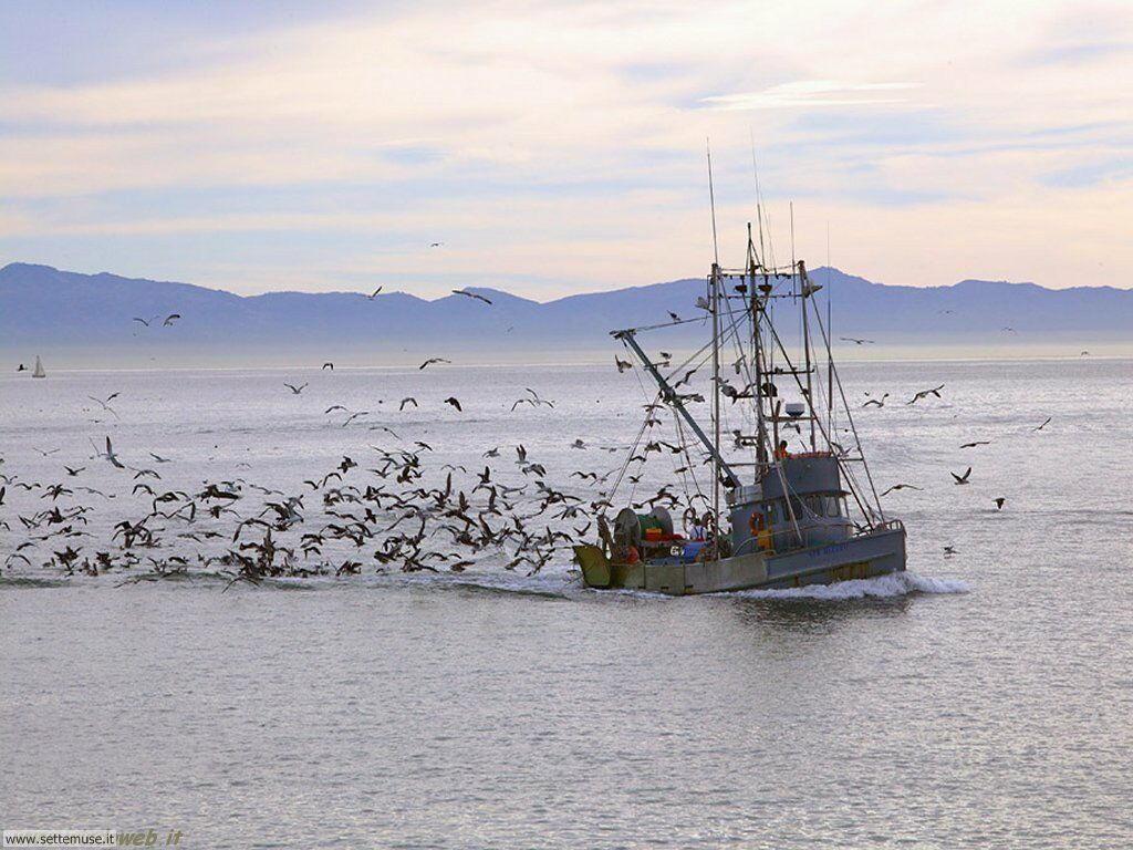 foto pesca sportiva 4