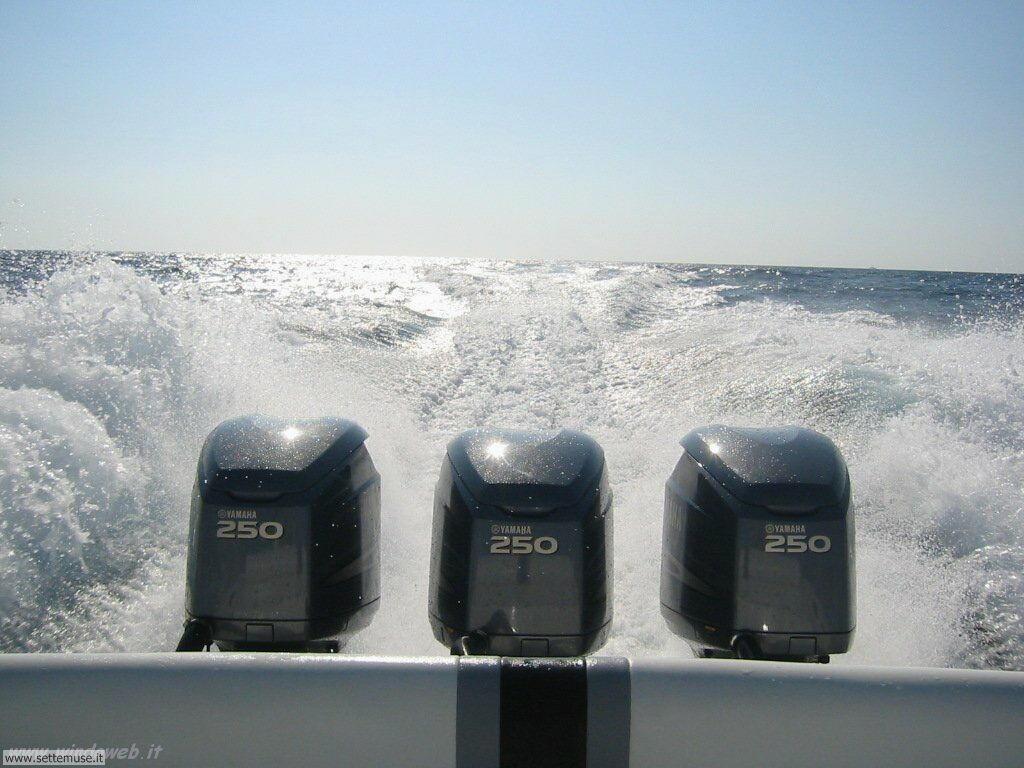 foto pesca sportiva 18