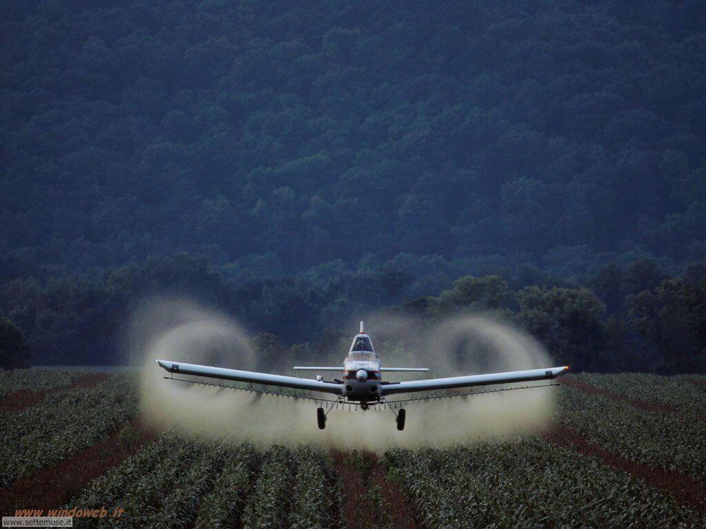 foto di volo sportivo volo aereo deltaplano per sfondi 27