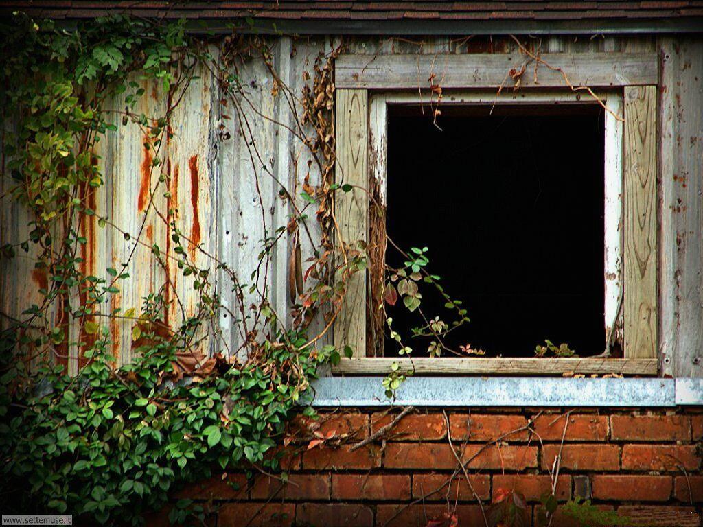 Sfondi desktop finestre 008
