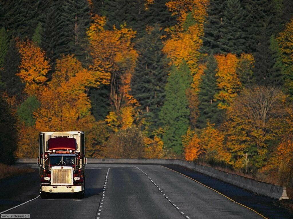 Sfondi desktop Camion e mezzi pesanti_004