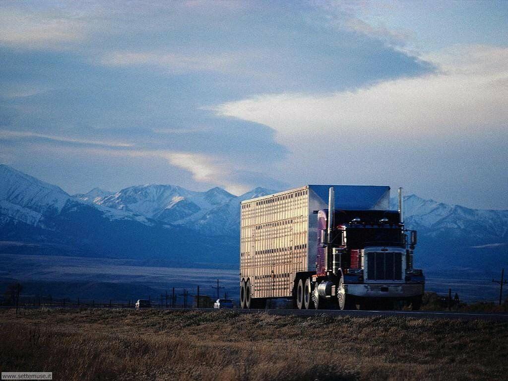 Sfondi desktop Camion e mezzi pesanti_012