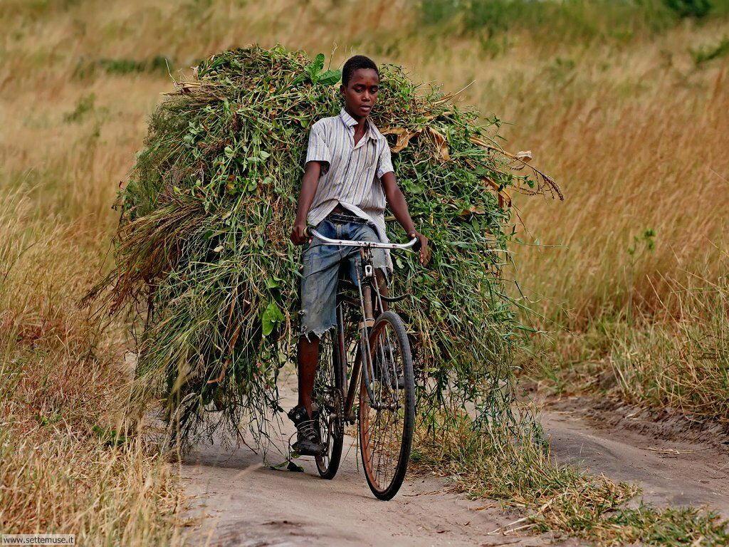 Sfondi desktop di cicli e biciclette_016