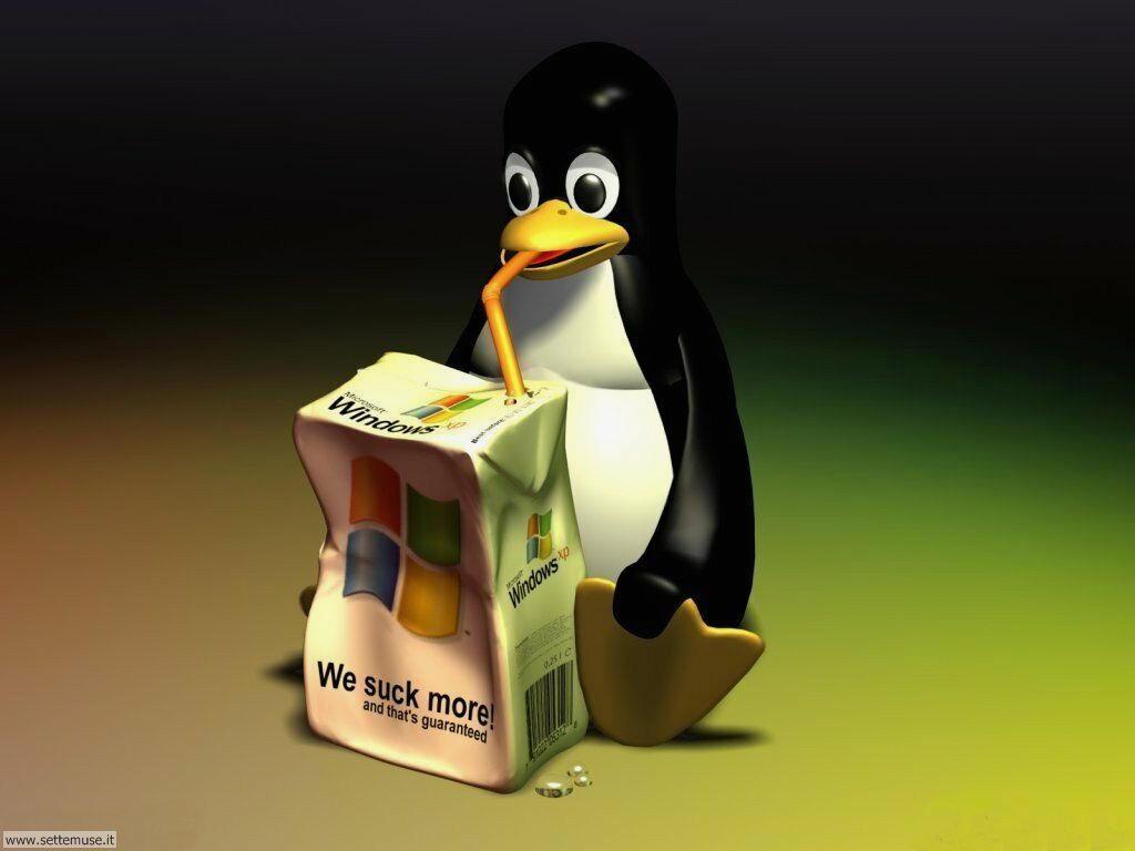 foto per sfondi desktop PC 032