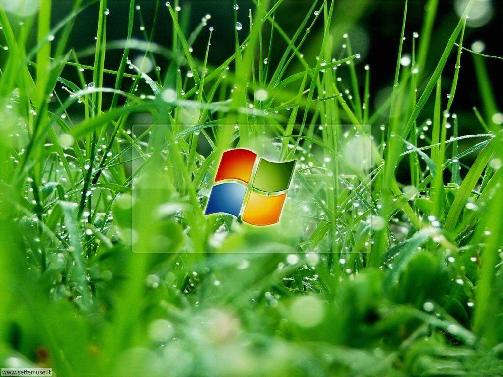 foto per sfondi desktop PC 041