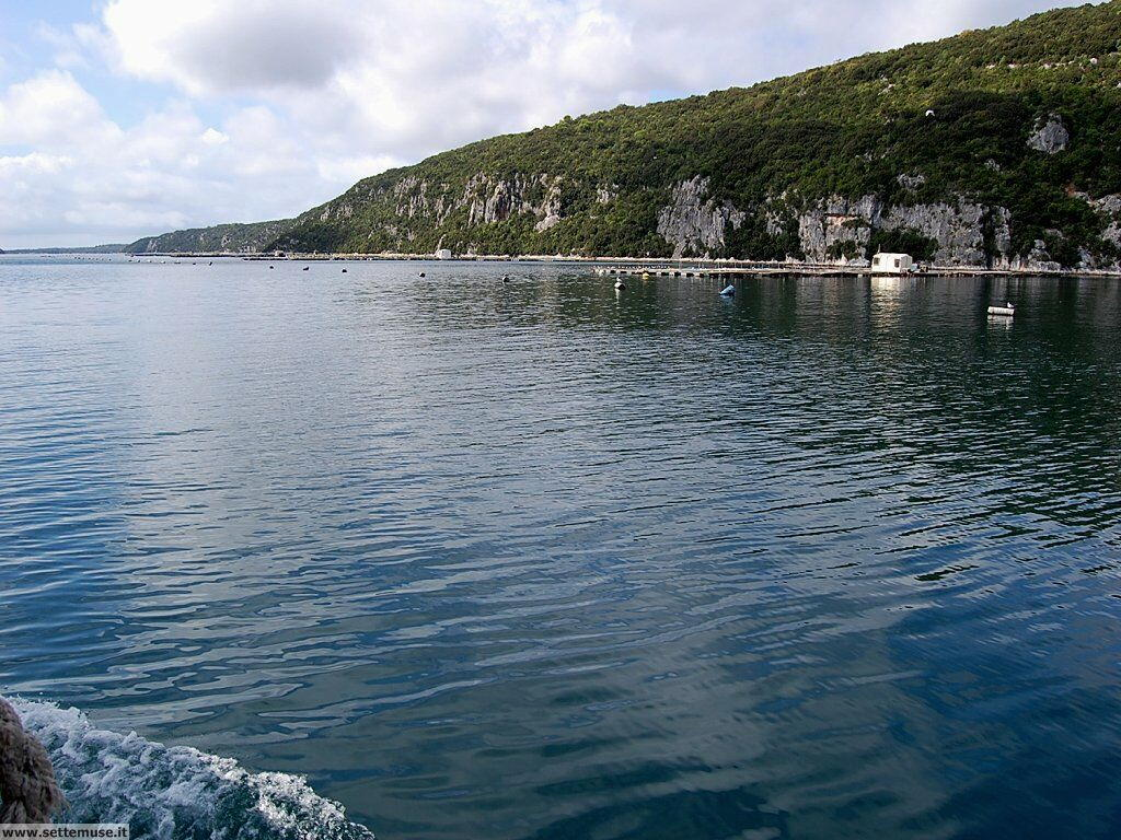 foto limfjord 071.JPG