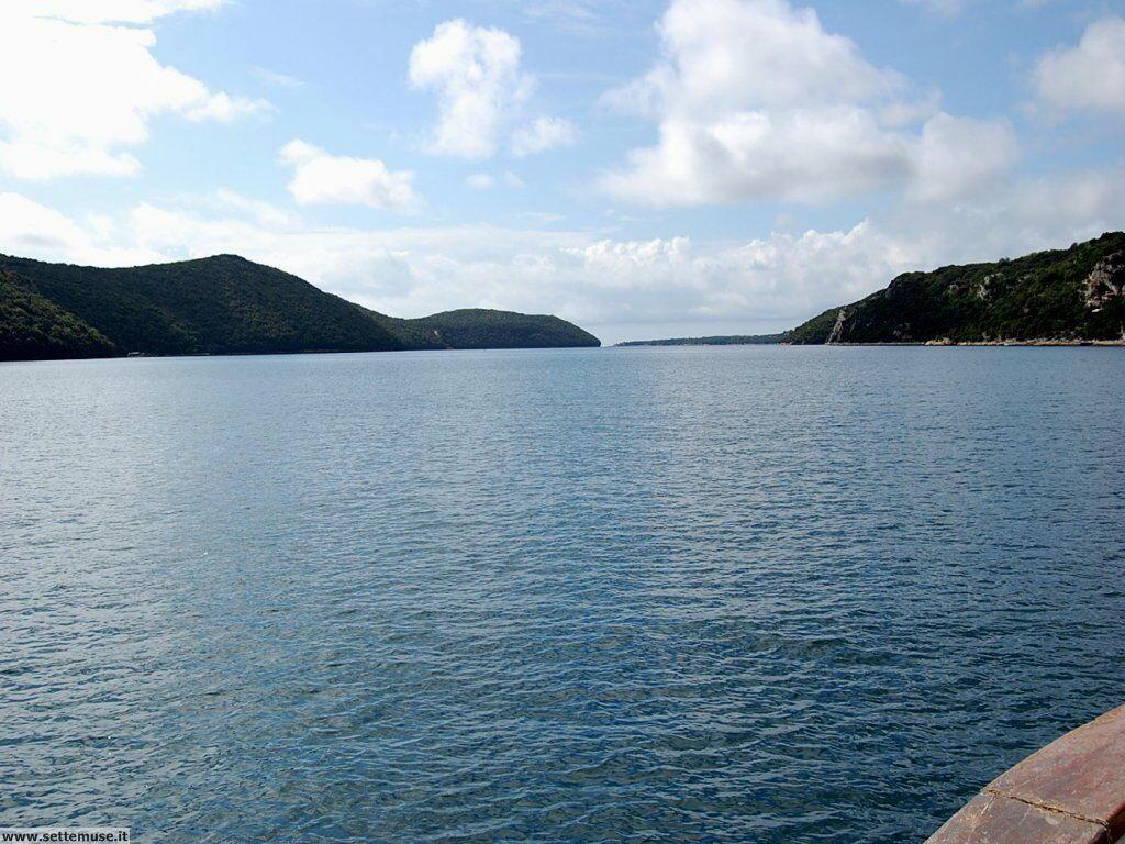 foto limfjord 075.JPG