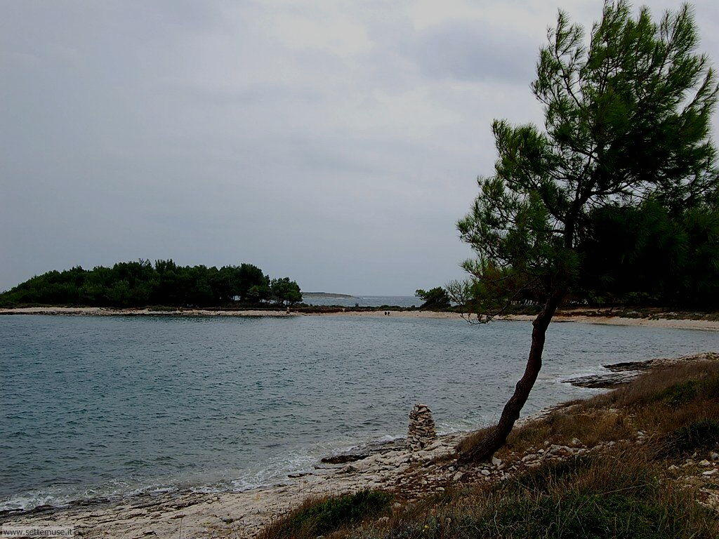 foto Croazia Premantura