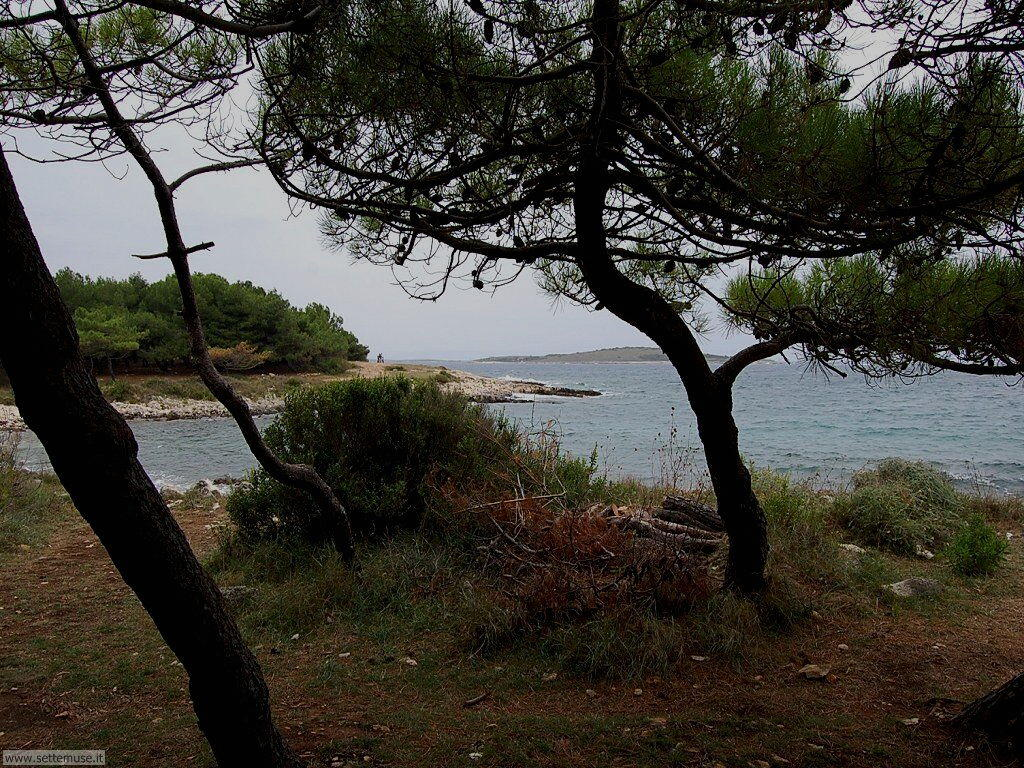 foto croazia premantura 042