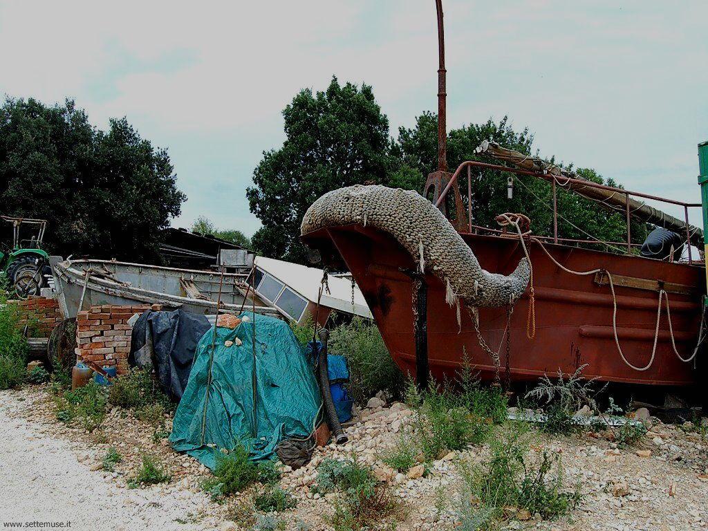 foto croazia Sisan 9