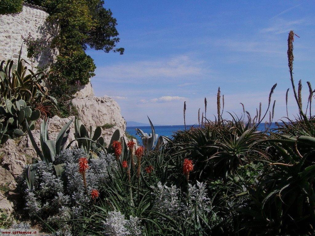 foto Antibes 12