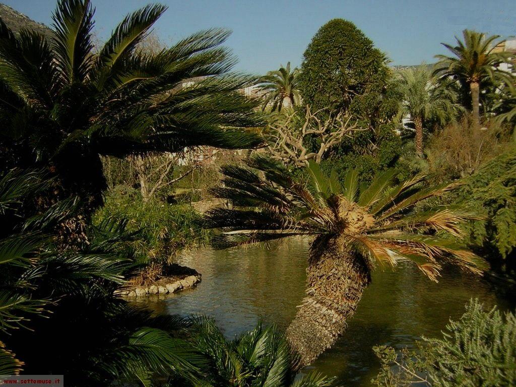 Monaco giardini giapponesi cosa vedere cosa fare in for Giardini giapponesi