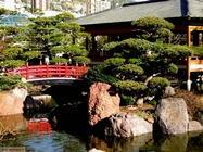 monaco giardini giapponesi