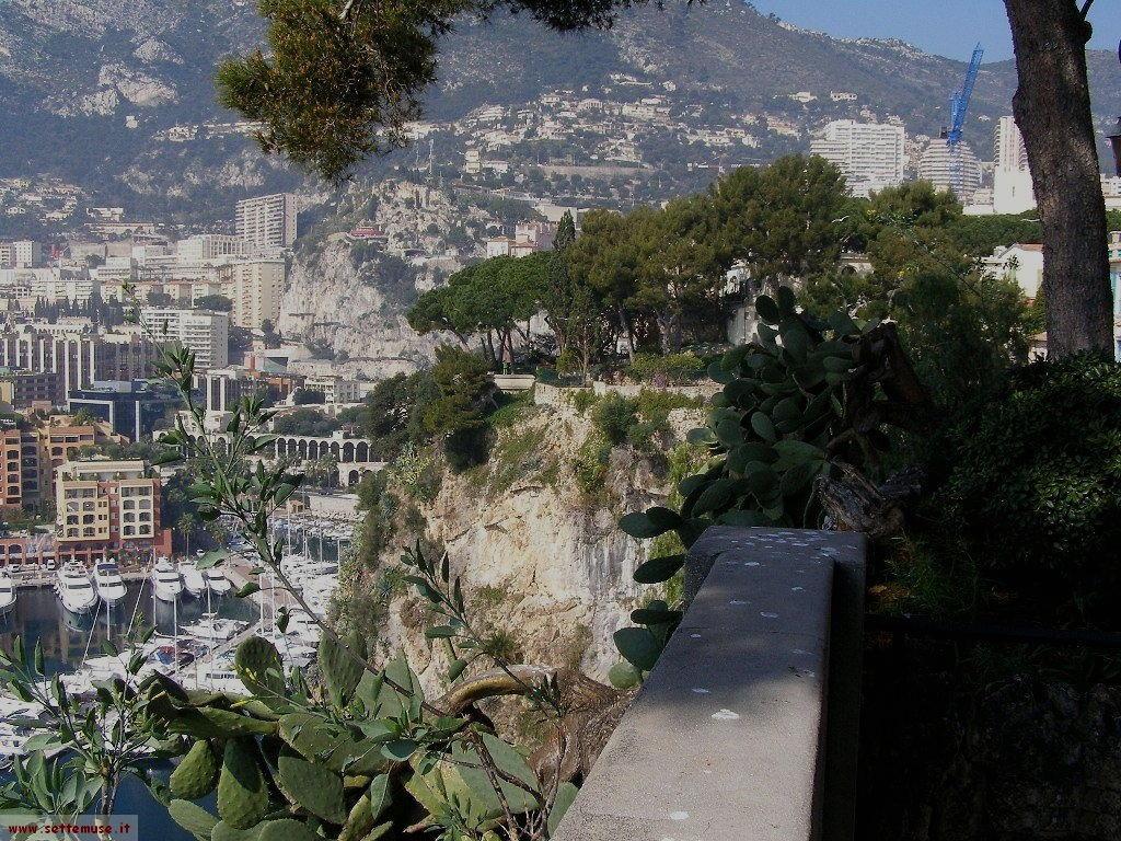 Panorama di Montecarlo dal Principato di Monaco