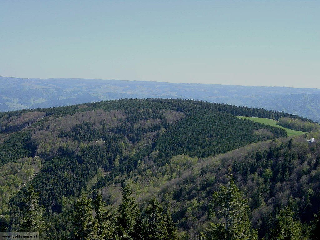 foto Germania foresta nera