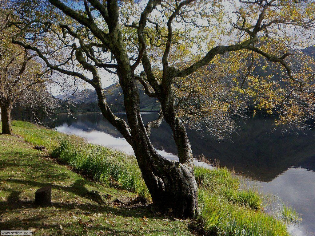 foto_irlanda/kylemore_abbey_03.JPG