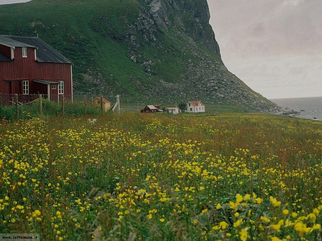 norvegia_007