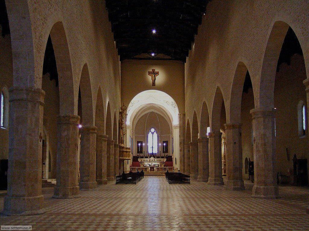 Foto Aquila, chiesa S. Maria Collemaggio, interno