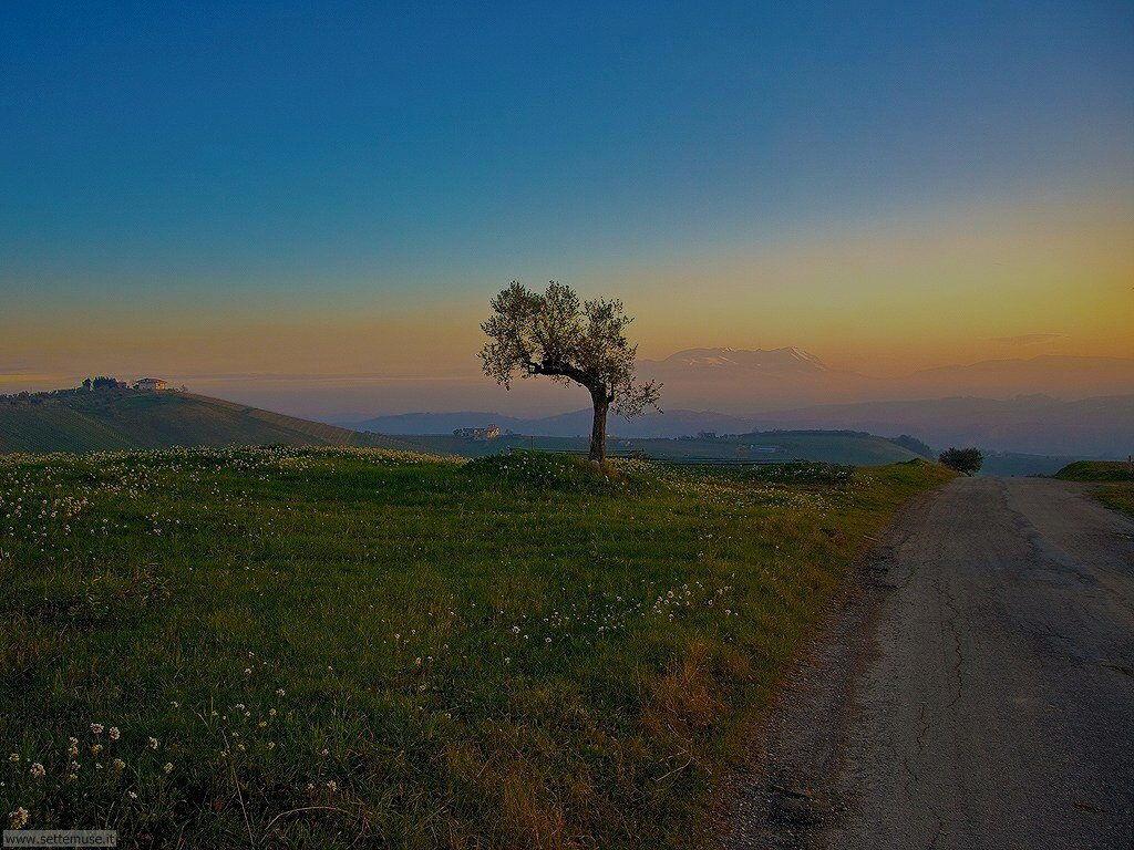Foto del Parco Naz. della Maiella provincia di Chieti