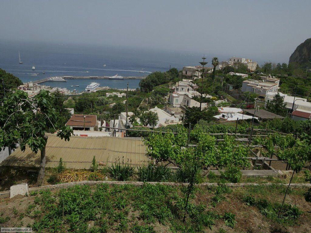 Isola di Capri 009