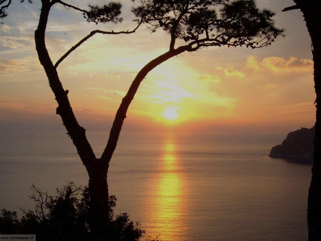 foto Capri