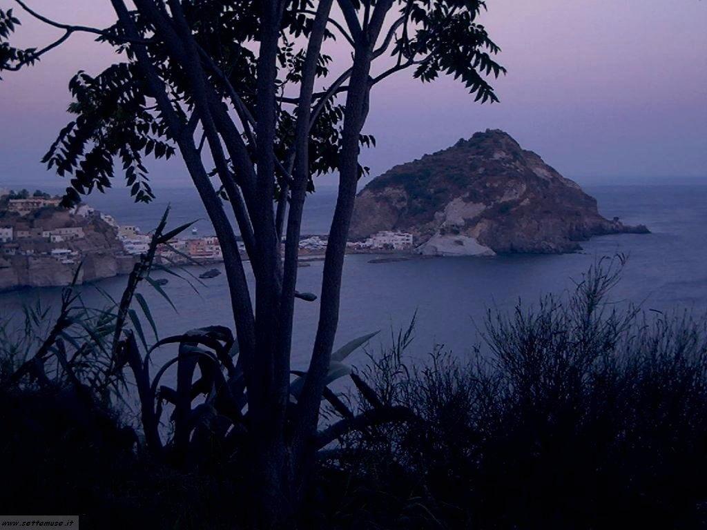 Napoli isola Ischia 6