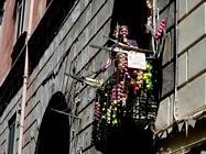 Foto Napoli folkloristica 031