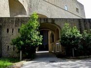 Foto Napoli folkloristica 050