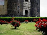 Foto Napoli folkloristica 060
