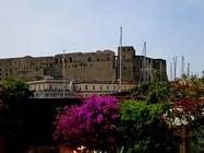 Foto Napoli folkloristica 087