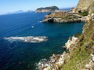 Foto Napoli folkloristica 128