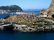 Foto Napoli folkloristica 129