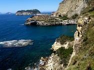 Foto Napoli folkloristica 130
