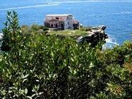 Foto Napoli folkloristica 132