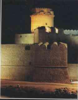 Ischia - Castello Aragonese fotografato di notte
