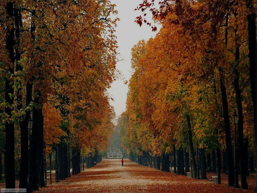 parma parco e palazzo del duca