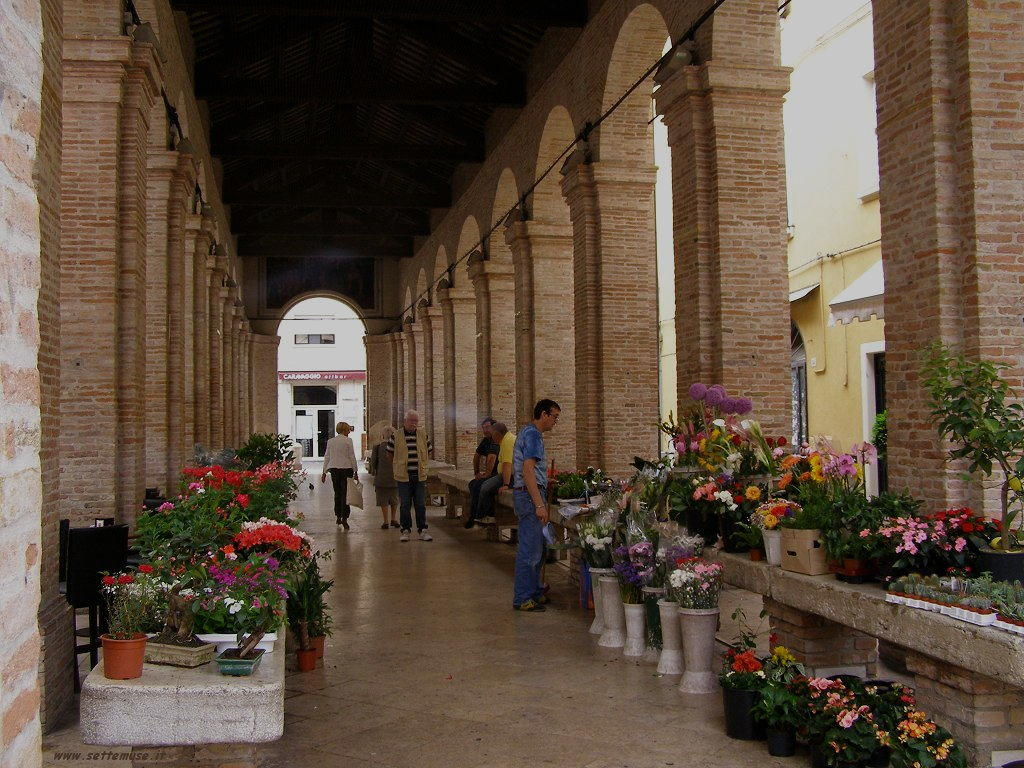 Rimini 24