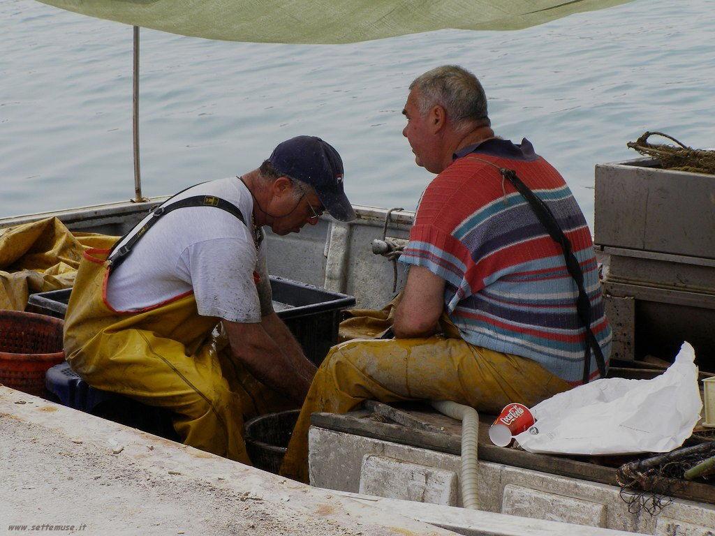 rimini pescatori
