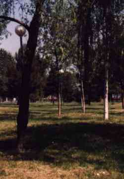 Rimini - Parco Briolini a San Giugliano Mare