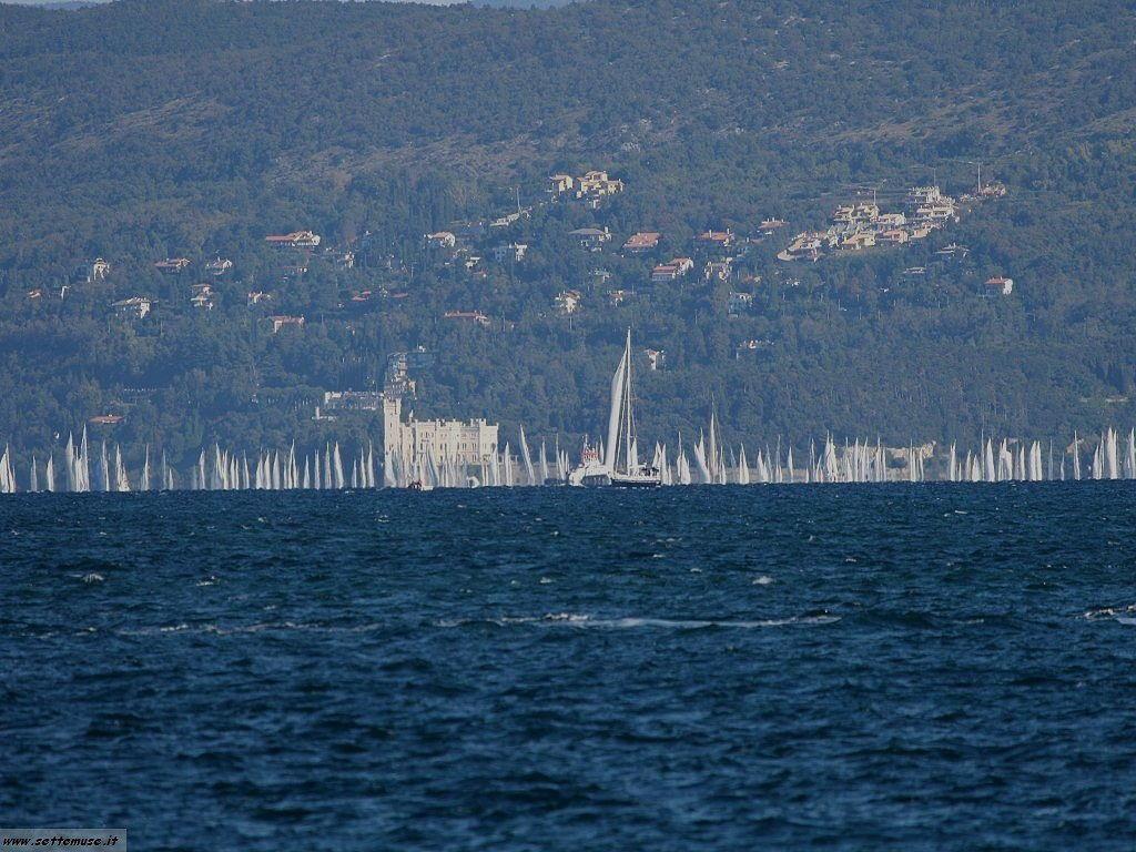 Trieste la barcolana 2